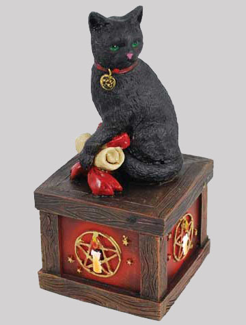 Wiccan Magical Black Cat Pentagram Wishing Box