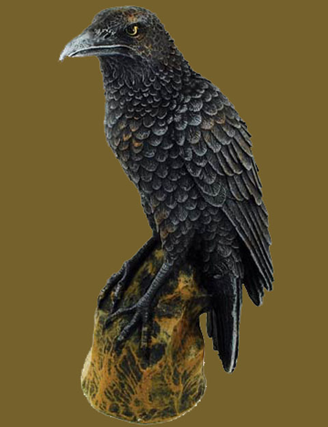 Forward Looking Sacred Black Raven Statue Gothic