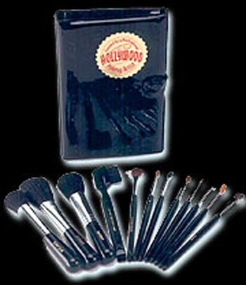 12 pc Professional Makeup Brush Kit w/Case